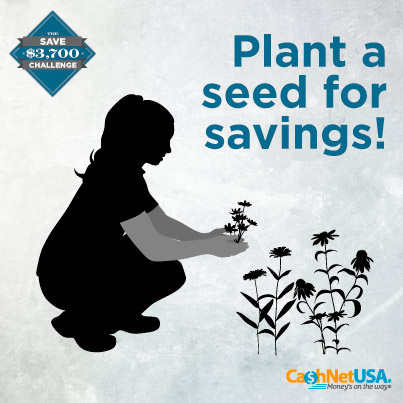 Save $3,700 Challenge Month Four: Plant a Garden