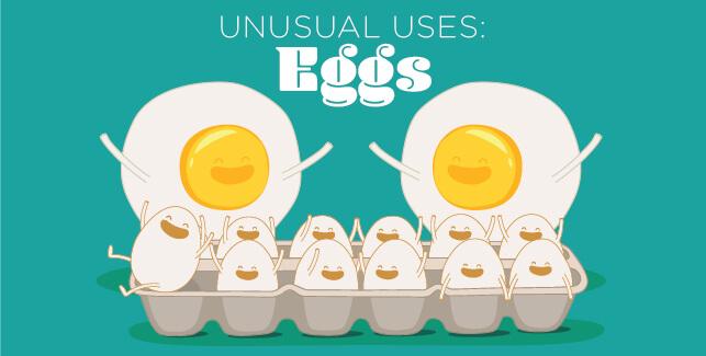 Unusual Uses: Eggs