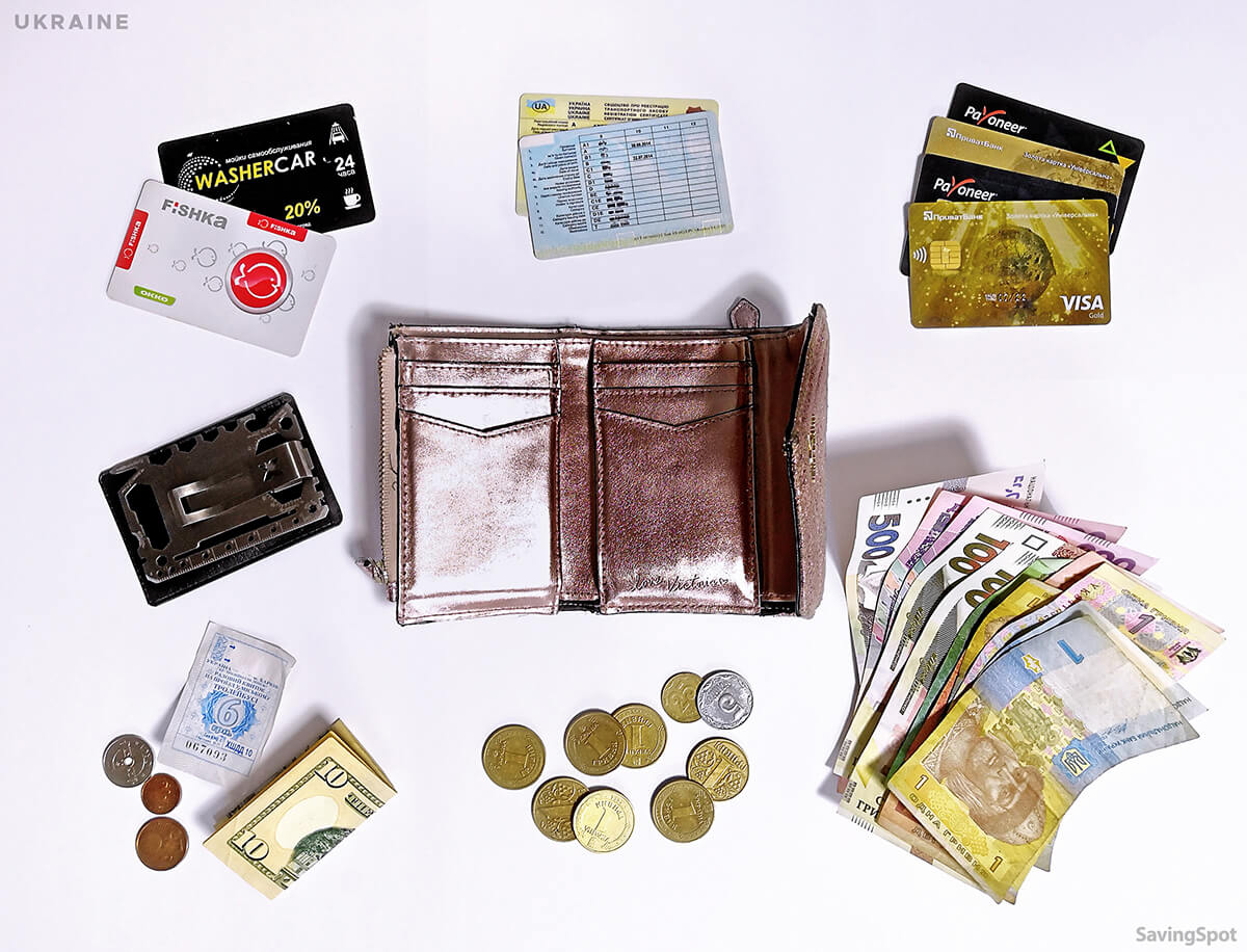 Whats in Your Wallet CONTENTS Participant Anastasiya